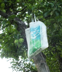 Taska na jablka